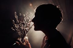 Sylwetka piękna młoda dziewczyna z ogromnym naręczem wierzba w rękach Fotografia Royalty Free