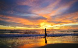 Sylwetka pojedynczy młodej kobiety odprowadzenie na plaży gdy zmierzch zdjęcie royalty free