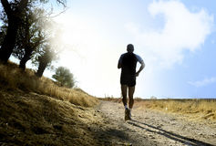 Sylwetka potomstwa bawi się mężczyzna bieg na wsi w przecinającego kraju treningu przy lato zmierzchem Zdjęcia Stock