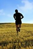 Sylwetka sporta mężczyzna biega z drogi w wsi na żółtym trawy polu przy zmierzchem Obraz Stock