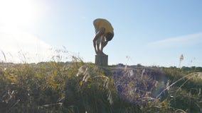 Sylwetka sporty mężczyzna pozycja przy joga pozą plenerową Jogowie ćwiczy joga ruszają się i ustawiają w naturze atleta Obraz Royalty Free