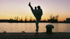 Sylwetka Taekwondo wojownik na zmierzchu nad morzem zdjęcia stock