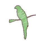 Sylwetka z papuzim tropikalnym zwierzęciem barwiącym Zdjęcia Royalty Free