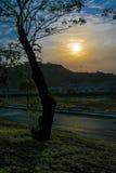 Sylwetka zmierzchu krajobrazu scena Obrazy Royalty Free