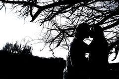 Sylwetki całowanie dobierają się plenerowego w parku Zdjęcie Royalty Free