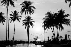 Sylwetki drzewka palmowe na tropikalnej plaży Obraz Royalty Free