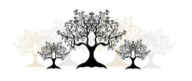 sylwetki drzewne Fotografia Royalty Free