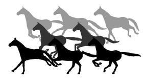 Sylwetki galopujący konie Alfa kanał 4K zbiory wideo