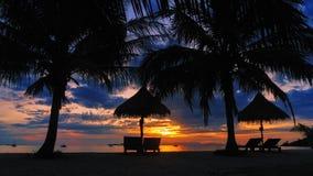 Sylwetki kokosowy drzewko palmowe z holów krzesłami na tropikalnej plaży zdjęcia royalty free