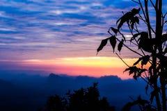 Sylwetki krajobrazowa góra z drzewem przy zmierzchem zdjęcia royalty free