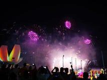 Sylwetki ludzie ogląda fajerwerku pokazu Akcyjna fotografia zdjęcia royalty free