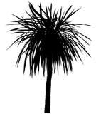 sylwetki palmowy drzewo royalty ilustracja