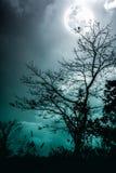 Sylwetki suchy drzewo przeciw nocnemu niebu i jaskrawej księżyc krzyż obraz stock