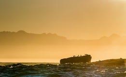 Sylwetki wyspa z ptakiem w kolorze zmierzch, Zdjęcie Stock