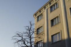 Symbiotische Ansicht des Fertighauses und des Baumasts mit Himmel im backg Stockfoto