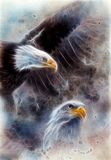 Symbol of American Freedom, a beautiful painting of two wild spirit eagles on an abstract background fract. Beautiful airbrush painting of two eagles on an vector illustration
