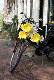 Symbol of Amsterdam. Bicycle decorated with white and yellow flowers Stock Image