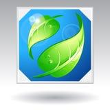 Symbol av alternativ ecoenergi Royaltyfri Foto