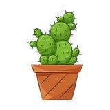 Symbol av kaktuns Royaltyfria Foton