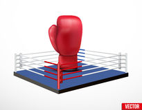 Symbol of a boxing and prize ring Stock Images
