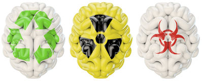 Symbol brains. 3D render of brains decorated with recycling, nuclear and biohazard symbols Stock Photo