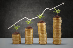 Symbol of business growth 1 Royalty Free Stock Photo