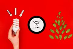 Symbol Cfl för ljus kula och för avfallfack royaltyfri bild