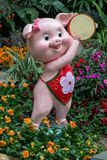 Year of the pig, Chinese New year 2019 lantern outdoor happy figure. Symbol of the Chinese zodiac New year 2019 a happy pig figure in a bed of flowers stock images