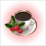 Symbol des wohlriechenden Tees mit Himbeere vektor abbildung