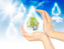 Symbol of environmental protection Stock Photography