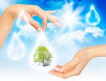 Symbol of environmental protection Royalty Free Stock Photography