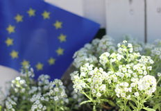 A symbol of the European Union Royalty Free Stock Photography