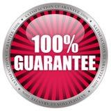symbol för 100 guarantee Royaltyfria Bilder