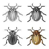 Symbol för Colorado skalbagge i tecknad filmstil som isoleras på vit bakgrund Illustration för vektor för krypsymbolmateriel Royaltyfri Bild