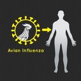 Symbol för fågelinfluensavektorlogo Arkivfoton