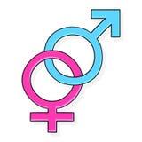 symbol för kvinnligillustrationmanlig Royaltyfria Bilder