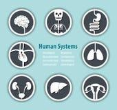 Symbol för mänskliga system stock illustrationer
