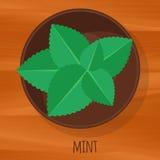 Symbol för vektor för mintkaramelllägenhetdesign Arkivbilder