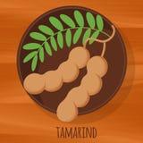 Symbol för vektor för tamarindfruktlägenhetdesign royaltyfri illustrationer