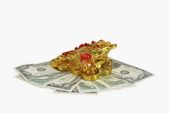 The symbol of feng shui - a golden toad. Sits on dollars Royalty Free Stock Photo
