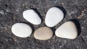 Symbol. Five white pebbles on a black rock Stock Photography