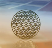 Symbol of  Flower of Life, Ancient Geometrical Shape Royalty Free Stock Photography