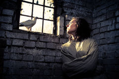 Symbol of freedom in a psychiatric prison Stock Photos