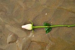 Symbol głęboka miłość, symbol Obraz Royalty Free