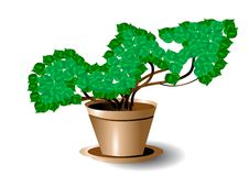 Symbol of growth Royalty Free Stock Photography