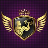 Symbol for gym golden color Royalty Free Stock Image