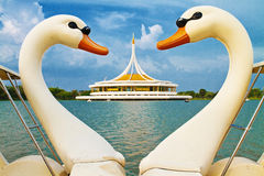 Symbol heart and love of swan boat. Public park, Suanluang Rama 9, Bangkok :  Thailand Royalty Free Stock Image