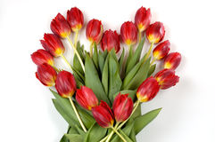 Symbol of heart made with tulips Royalty Free Stock Photography