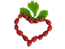 Symbol of heart from red berries Stock Images