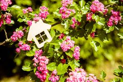 The symbol of the house Royalty Free Stock Image